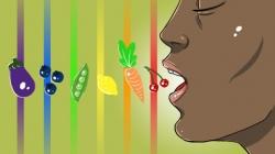 رژیم خوراکی رنگین کمانی - غذا رنگین کمانی چیست؟ | مجله سلامت یاثار