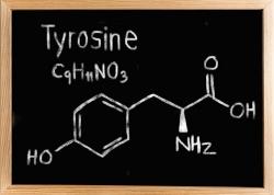 تیروزین چیست؟ و چه کاری انجام می دهد؟ خاصیت ها مکمل Tyrosine ال تیروزین | مجله سلامت یاثار