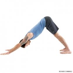 حرکات ورزش یوگا برای کمردرد - 7 حرکت یوگا برای دیسک کمر | مجله سلامت یاثار