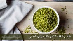 خصوصیات ماش - 10 فایده شگفت انگیز دانه ماشت برای تندرستی | مجله سلامت یاثار