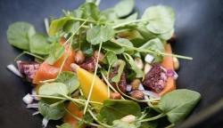 رژیم گیاهخواری برای کم شدن وزن - لاغری با رژیم خوراکی گیاهی | مجله سلامت یاثار